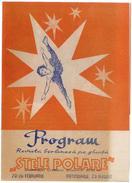 Romania, 1970's, Dinamo Berlin - Skating Ensemble Programme / Advertising Brochure - Programas