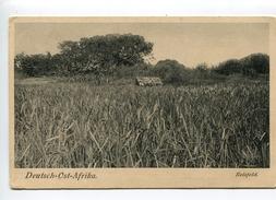 REISFELD Deutsch Ost Afrika - Tanzania