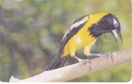 TARJETA DE VENEZUELA DE UN TURPIAL (BIRD-PAJARO) - Otros