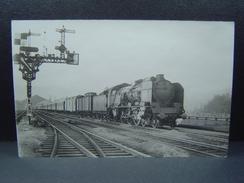 Locomotive à Vapeur 231 G Départ De Lyon Perrache En Direction De Marseille Hiver 1948/1949 Photo De L.Hermann - Trains
