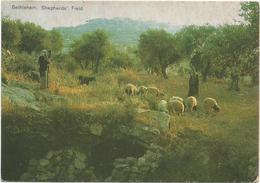 T3316 Bethlehem Bethleem Betlemme - Shepherd's Field - Champs Des Bergers / Non Viaggiata - Palestina