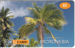 MICRONESIA - Palm Tree, FSM Tel Prepaid Card $5, Used
