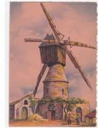 Nos Vieux Moulins à Vent En Anjou à Petit-Claye - Altri Comuni