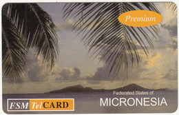 MICRONESIA - Palms & Island, FSM Tel Promotion Prepaid Card, First Premium Issue, Used