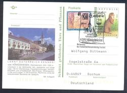 Austria 1997 Postal Stationery Card KÖNIGSWIESEN Architecture Church Kirche; Fauna Squirrel Eichhörnchen Rose Rosen - Nager