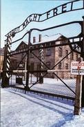 Militaria WW2 - Auchwitz - Arbeit Macht  Frei - 1939-45
