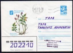 UdSSR  1984  Umschlag/ Entire Cover  O/ Used   Heilpflanze: Burnet, Bibernellwurz - Heilpflanzen