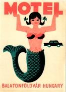 2 Hotel Labels Etiquette  Mythologie SIRENE Mermaid Zeemeermin Meerjungfrau   Motel Balaton Hungary  Dubrovnik Opatija - Etiquettes D'hotels