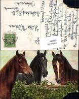 536484,Künstler AK Pferde Pferd - Pferde