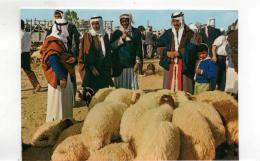 Postcard - Beer Sheba - Market Day Card No.5906 New - Cartes Postales