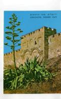 Postcard - Jerusalem - The Golden Gate Card No.8303 New - Postcards