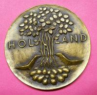 Medaille Bronze Par Gutterswyk Holland Mercure Et Pommes De Terre Potatoes Patate Papas Kartoffeln Diametre 8cms 180gr - Pays-Bas