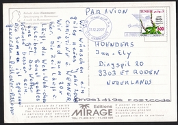 Tunisia: PPC Picture Postcard To Netherlands, 2007, 1 Stamp, Mint Herb, Flower, Card: Hammamet (traces Of Use) - Tunesië (1956-...)