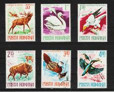 1977 - ROMANIA /  Protection De La Nature / Faune Yv No 3021/3026 Et Mi No 3417/3422  W - Vögel