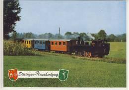 STAINZ  Stainzer Flascherlzug Eisenbahn V. Verein Stainzer Gilde - Stainz