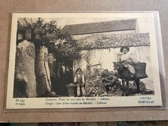 P0RTUGAL. CINTRA. COSTUMES. PATEO DE UMA CASA NO MUCIFAL. COLLARES. Nº 159. EDICAO M. C., 1928 - Portugal
