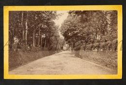 Photo-carte De Visite / CDV / W / 2 Scans / England / Budleigh Salterton / East Devon / Photo W. H. Wells - Lieux