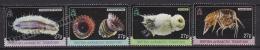 British Antarctic Territory - Antartique Britannique 2010 Yvert 524- 27, Marine Biodiversity, Invertebrates - MNH - Unused Stamps