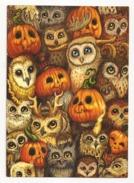 Halloween, Owls And Pumpkins, Unused Postcard - Zonder Classificatie