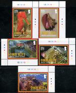 BRITISH VIRGIN ISLANDS 2010 Marine Life, Coral Reefs, Fauna MNH - British Virgin Islands