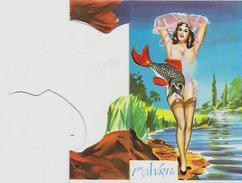 CPSM Système Louis Carrière Femme Girl Woman érotisme Non Circulé Photochrom 2000 En 2 Volets Voir Scan - Carrière, Louis