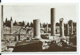AK 0636  Solin ( Salona ) - Bazilika Muccnika Um 1930-40 - Croatie