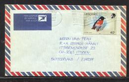 Lesotho, Cover, 1988,  Birds - Lesotho (1966-...)