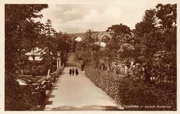 Portugal  Coimbra   Jardim Botânico    A 5794 - Coimbra