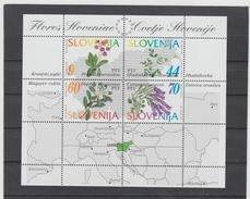 NEU722  SLOWENIEN / SLOVENIJA  1994 MICHL  BLOCK 1 Postfrisch SIHE ABBILDUNG - Slowenien