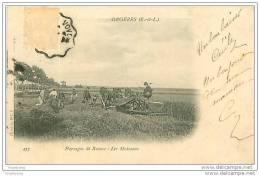 28.ORGERES.PAYSAGES DE BEAUCE.LES MOISSONS - Autres Communes