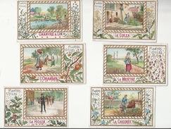 CHROMO EDUCATIF - PLANTES UTILES - Lot De 6 CHROMOS DIFFERENTS  - CHANVRE LIN, COLZA, ORANGER, MENTHE, HOUX, CHICORÉE - Trade Cards
