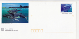 PAP Ref 82 E 1 Baleines à Bosse Et Son Petit - Mayotte (1892-2011)