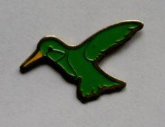 C8 )  OISEAUX...oiseau...MARTIN PECHEUR - Animaux