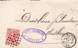 28 MRT 1891 Vouwbrief Van Meppel Met Firmalogo Naar 'sGravenhage Met  NVPH21 En Puntstempel 75 - Periode 1891-1948 (Wilhelmina)