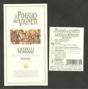 ITALIA - Etichetta Vino CASTELLI ROMANI Doc Cantina IL POGGIO DEI VIGNETI Bianco Del LAZIO - Witte Wijn