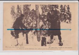 Carte Postale - Missions Des Pères Oblats - Missionnaires Abattant Des Arbres Pour Le Campement Du Soir - Canada