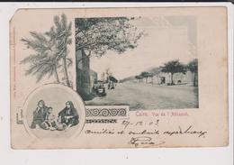 CPA - CAIRE - Vue De L'Abbasieh - Le Caire