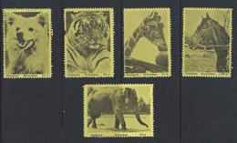 Pz.- Stadspost ROTTERDAM  ZEGELS. Van 25 - 50 - 25 - 75 - 100 En 15 Cent. Wolf. Tijger. Giraffe. Paard En Olifant - Sonstige
