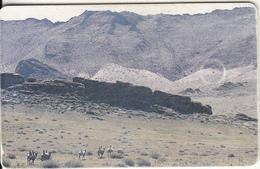 MONGOLIA(chip) - Landscape(300 Units), Used