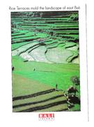 RICE TERRACES MOLD THE LANDSCAPE OF EAST BALI - VIAGGIATA 2001 - (686) - Indonesia