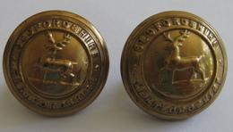 2 Buttons Bedfordshire And Hertfordshire Regiment  - 19mm, J.R. Gaunt & Son, London - 4 Scans - Boutons