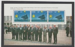 UUU19  IRLAND 1992 Michl 810 MH - BLATT ** Postfrisch Siehe ABBILDUNG - 1949-... Republik Irland