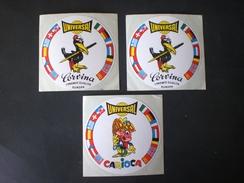ADESIVI CARIOCA CARVINA - Stickers