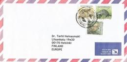 Botswana 2005 Ramotswa Serval Civet African Wild Cat Cover - Botswana (1966-...)