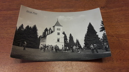 Postcard - Croatia, Ivanec   (24698) - Slovenia
