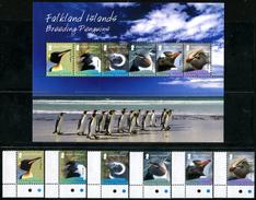 FALKLAND ISLANDS 2008 Breeding Penguins, Airmail, Fauna MNH - Falkland