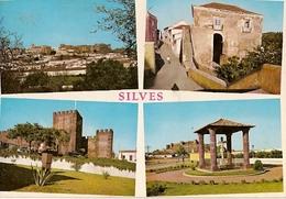 Portugal & Bilhete Postal, Vistas Panoramicas Do Castelo De Silves, Caldas Da Rainha 1971 (458) - Faro