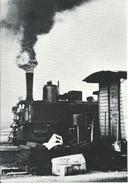 Österreichische Dampflokomotive 298.207 In Der Zugförderungsstelle Gmünd 1979
