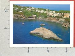 CARTOLINA NV ITALIA - VENTOTENE (LT) - Spiaggia La Nave - Veduta Aerea - 12 X 17 - Latina