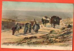 IAV-14  Scènes Et Tpes. Tribu De Nomades En Route, Chameaux.  Circulé Sous Enveloppe - Algérie